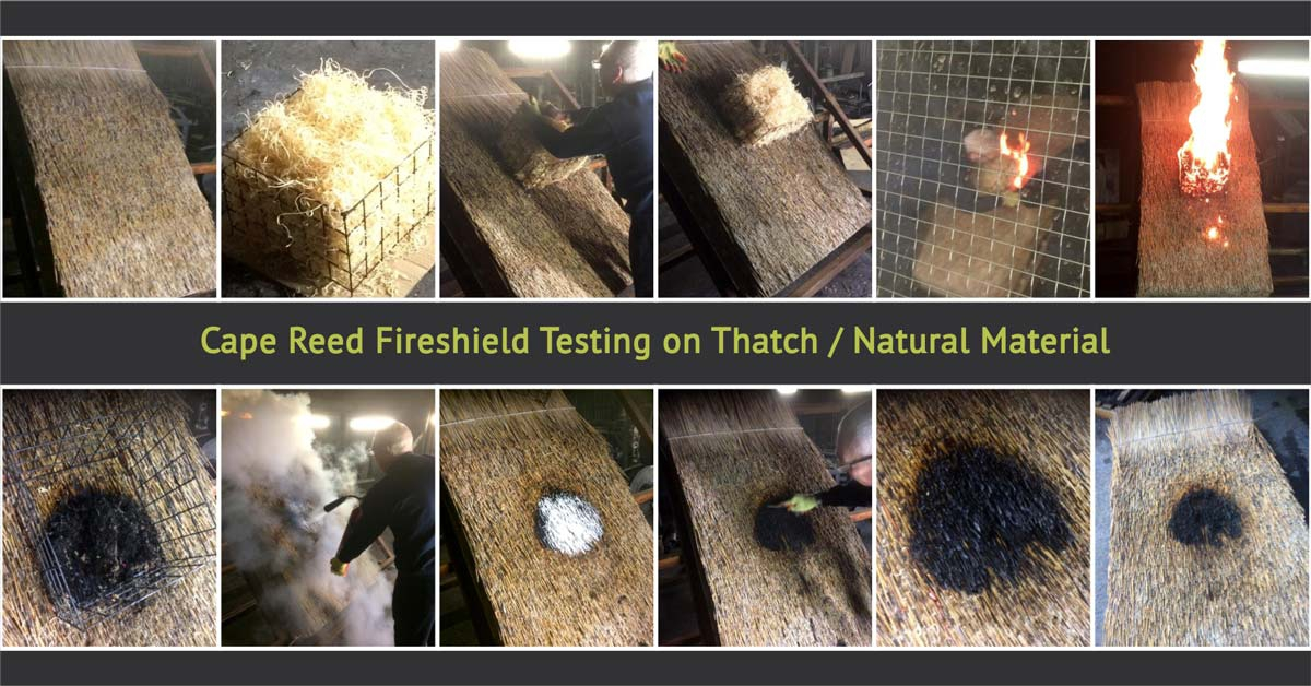 Fireshield testing on thatch