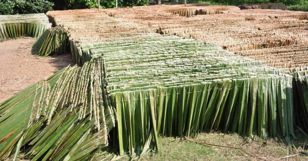 Types of thatching material atap nipa thatch