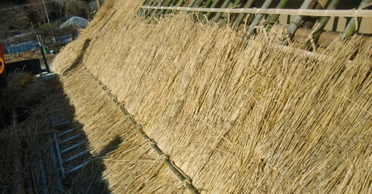 Types of thatching material kaya thatch