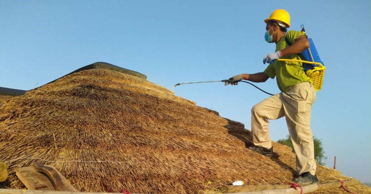 Cape Reed Fireshield application on a thatched roof